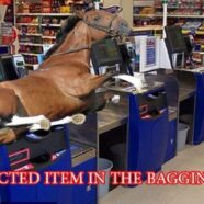 What's so bad about horse meat anyway?