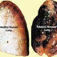 Smoking Makes Me Feel Epic
